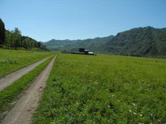 Недорого участки в Горном Алтае