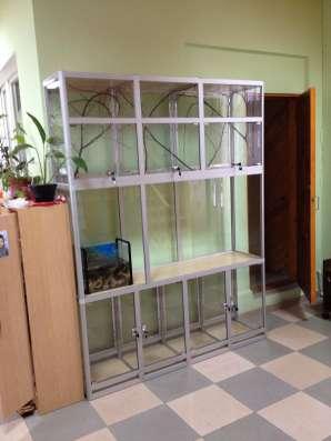 Клетка витрина для шиншилл, дегу, других грызунов