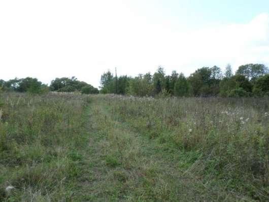 Земельный участок 25 соток д.Образцово в Малоярославце Фото 1