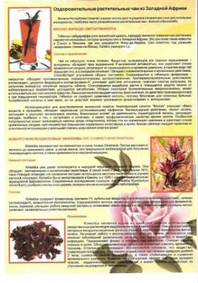 Растительные чаи. Кинкелиба. Африка PRIDE в Новосибирске Фото 2