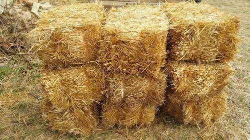 Солома пшеницы в тюках(брикетах). Краснодар