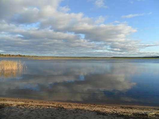 Продам участок, домик, колодец, балонный газ, озеро 200 метр в Санкт-Петербурге Фото 3