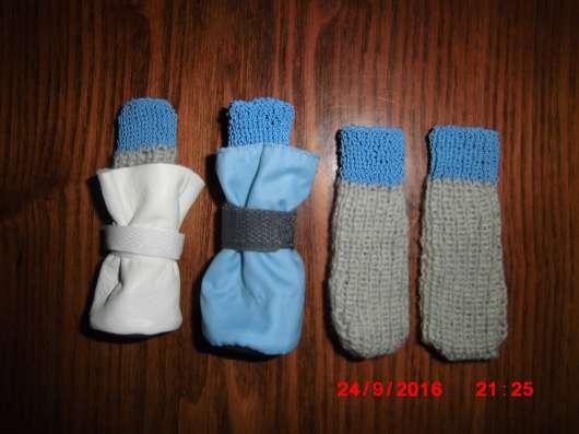 Для маленькой собачки носочки в г. Добрянка Фото 1