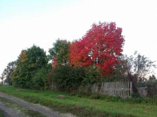 Продается земельный участок 12 соток в д. Шваново, Можайский р-н,140 км от МКАД по Минскому, Можайскому шоссе. Фото 1