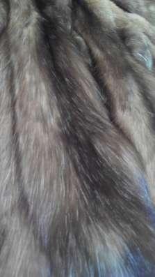 Мех соболя бургузинского