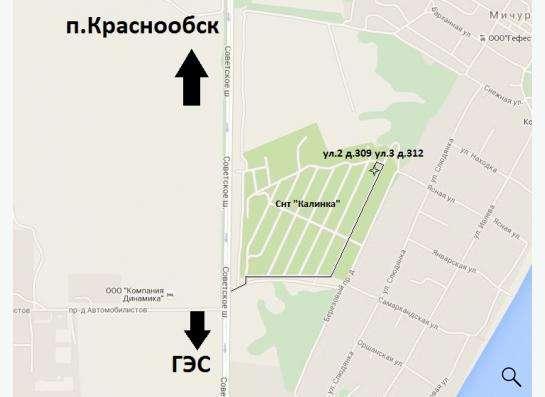 Рассада в Новосибирске Фото 1