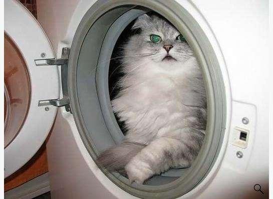 Ремонт стиральных машин, холодильников и др.
