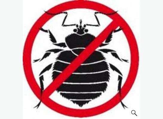 Избавим от клопов, тараканов и др.насекомых