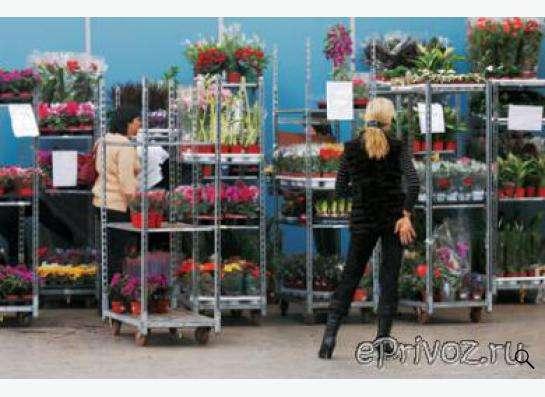 Евро-тролли б/у, тележки для перевозки горшечных растений в Перми Фото 1